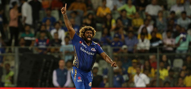 Deepak ChaharTop 5 Bowlers who have bowled most dot balls in a Single IPL Season