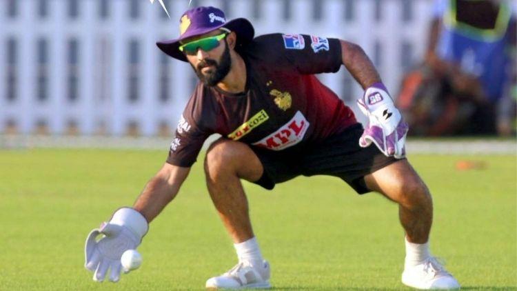 Dinesh Karthik backs Pat Cummins in order to mark a strong comeback