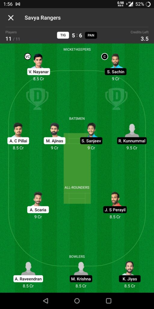 Grand League Team For Tigers vs Panthers